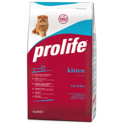 Complete pet food full of fresh salmon and rice for indoor-living and/or sterilised cats